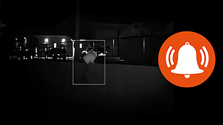 Motion Detection Alerts